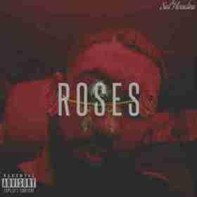 Roses BY Sal Houdini